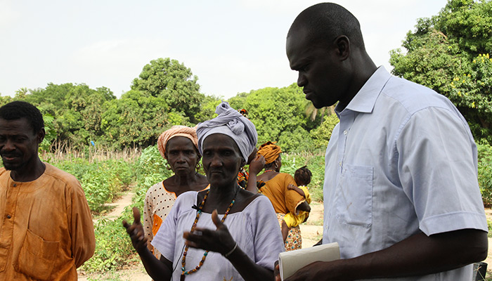 The business model includes subsidies of 80% from the public institutions and the remaining funding comes from the starting investments of the women involved in the project. Bati Africa aims to develop over 3,000 income-generating activities in Senegal.