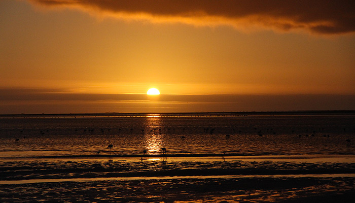 We will get rewarded the day after thanks to this wonderful sunset along the beach...